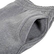 Спортивные штаны Venum Giant 2.0 Pants Grey, фото 2