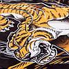 Рашгард Venum Tiger Rash Guard, фото 4