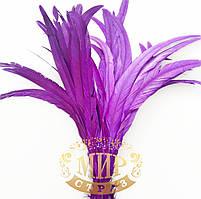 Перо петуха (выберите длинну), ширина 2,5см, цвет Purple, 1шт