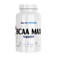BCAA Max Support 250 грамм - orange