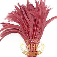 Перо петуха, длинна 30-35см, ширина 2,5см, цвет Berry, 1шт