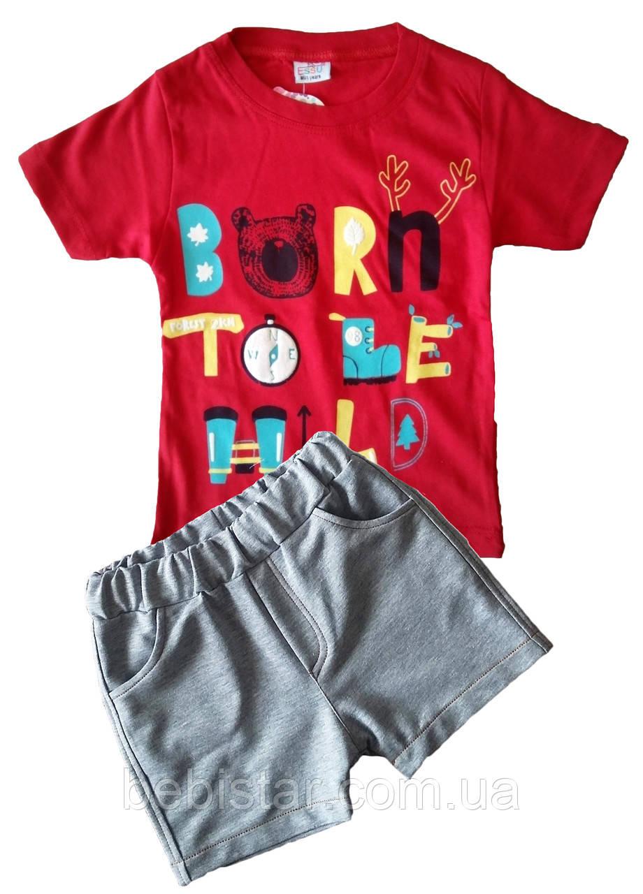 Футболка отважный исследователь и шорты модник для мальчика 1-4 года