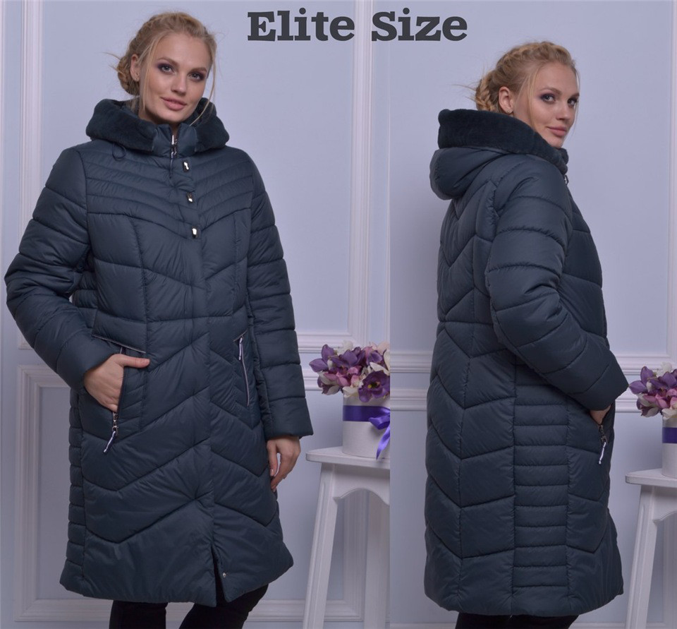 Куртка зимняя Agniya на синтапоне (3 цвета) 105 (10233)