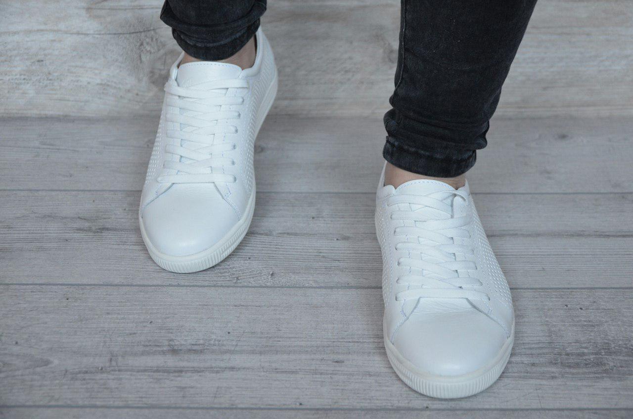 80b9929a Мужские кожаные кеды Safari белые, цена 1 330 грн., купить в Киеве —  Prom.ua (ID#690657419)