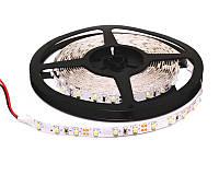 Герметичная светодиодная LED лента IP65 smd 3528 (60 диод/м) Стандарт класс