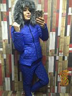 Лыжный женский костюм ноп649/1