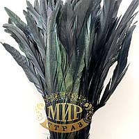 Перо петуха (выберите длинну), цвет Black, 1шт