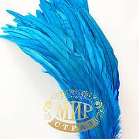 Перо петуха (выберите длину), ширина 2,5см, цвет Blue Zircon, 1шт