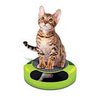 Когтеточка для кошек Мышелов fine pet feline frenzy МЫША  ИГРУШКА для котов