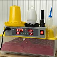 Инкубатор Tehno MS-36