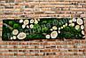 Панно зі зрізами, корою і стабілізованою мохом