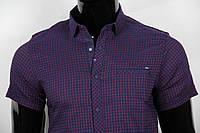 Рубашка мужская ANG 39640/39645 норма и батал