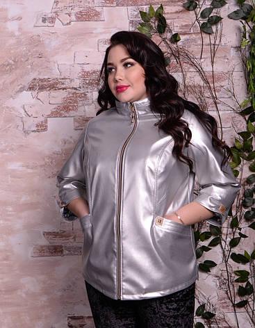 a45199ed010e11d Блестящая кожаная куртка для полных девушек Роксана: 1 250 грн ...
