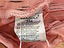 Трикотажные шорты  для девочек Seagull 134-164 р.р., фото 6