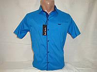 Мужская рубашка с коротким рукавом на кнопках Paul Semih, Турция, фото 1