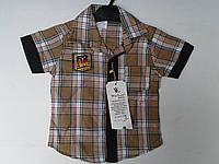 Рубашка для мальчиков. Размер от 1-4 лет. , фото 1