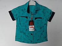 Рубашка для мальчиков. Размер от 1-4 лет.