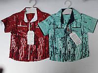 Рубашка для мальчиков. Размер от 1-4 лет. х/б.