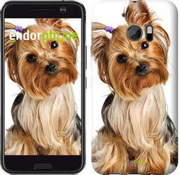 """Чехол на HTC 10 Йоркширский терьер с хвостиком """"930c-464-8094"""""""