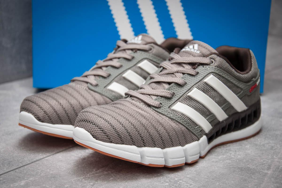 Кроссовки мужские в стиле Adidas Climacool, серые (13085),  [  43 44