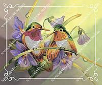 Вышивка бисером - Колибри
