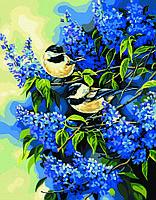 Картины по номерам Птички на ветках сирени