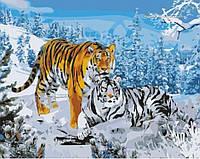 Картины по номерам - Два тигра