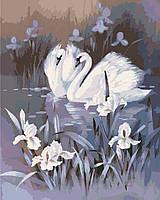 Картины по номерам - Лебединая верность