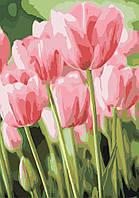 Картина по номерам - Весенние тюльпаны