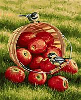 Картина по номерам - Хрустящие яблочки