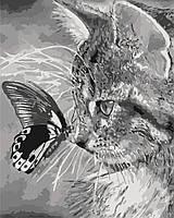 Картина по номерам - Котенок и бабочка