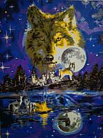 Картина по номерам Turbo Волчья луна VP623