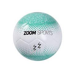 М'яч футзальний ZoomSports  (Size 4)