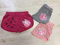 CSQ86112,Seagull, Трикотажные шорты для девочек,, фото 1