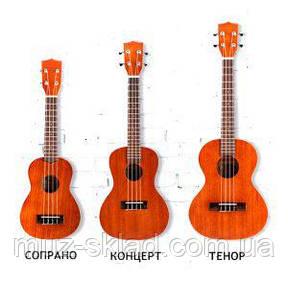 Советы по выбору укулеле: сопрано, концерт, тенор