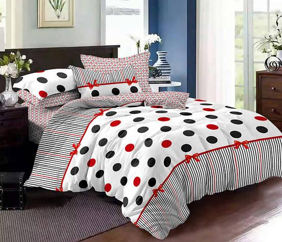 Двуспальный комплект постельного белья евро 200*220 хлопок  (9674) TM KRISPOL Украина, фото 2