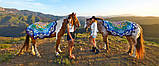 Пляжний Килимок Яскрава Мандала (циновка для пляжу + парео) / Пляжный Коврик Яркая Мандала, 150 см, фото 6