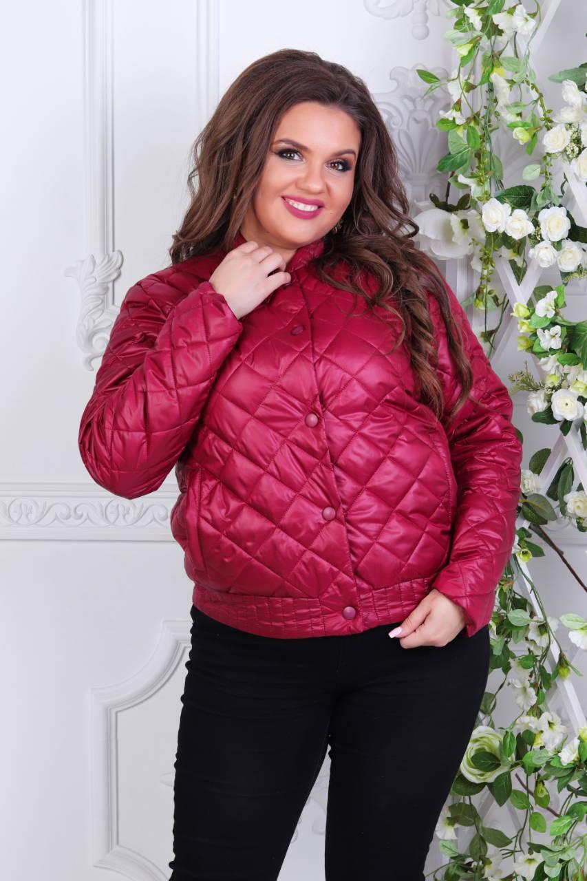 Куртка демисезон, модель 310 батал, цвет - марсала