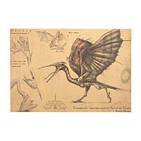 Декор: Исследование Кетсалькокалуса Плакат Птерозавров, фото 1