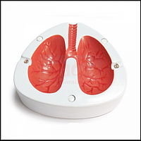 Кашляющая пепельница Coughing Ashtray Lungs в виде легких, фото 1