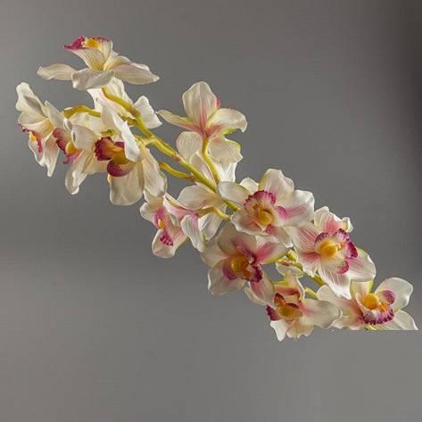 Орхидея белая., фото 2