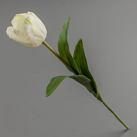 Тюльпан (силикон) белый., фото 2