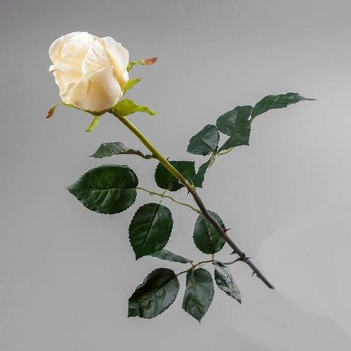 Искусственный цветок роза кремовая (силикон).