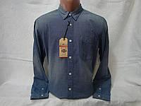 Мужская рубашка с длинным рукавом Energie