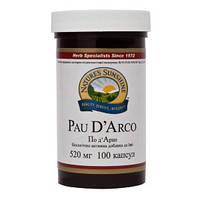 Pau D`Arco  Кора муравьиного дерева