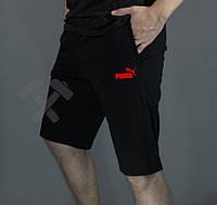 Мужские спортивные шорты Puma,  пума (черный с красным логотипом ), Реплика