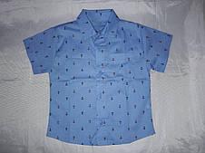 Рубашка детская на мальчика с принтом