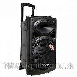 Колонка переносная с микрофономTEMEISHENG DP 297 L