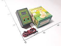 Терморегулятор  от +15 до +40°С /10А  цифровой для инкубатора  ЦЫП-ЦЫП