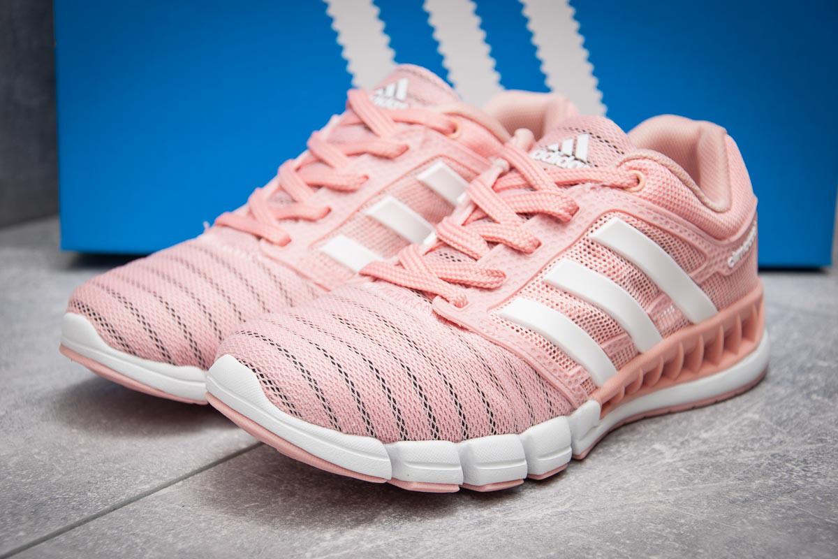 Кроссовки женские Adidas Climacool, коралловые (13097) размеры в наличии ► [  40 (последняя пара)  ] (реплика)